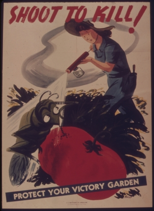 A World War II poster encouraging the domestic use of DDT. Source: National Archives and Records Administration