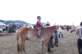A little boy riding a horse. In the Mongolian countryside, boys learn to ride horses when they are 4-5 years old.