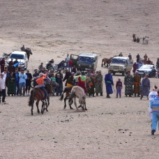 After the oboo veneration, local people organize horse races (25 June 2008). Bürentogtokh soum, Khövsgöl aimag.