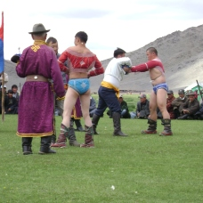 Mongol wrestling. After the oboo worship ceremony, local people gather on green grass and organize wrestling.