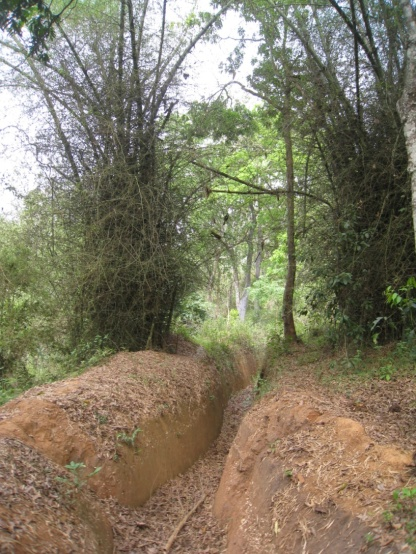 Elephant Walls and Trenches