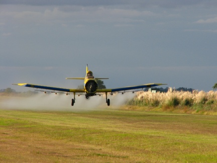 Fumigation with pesticides. Photograph: Wikimedia Commons.
