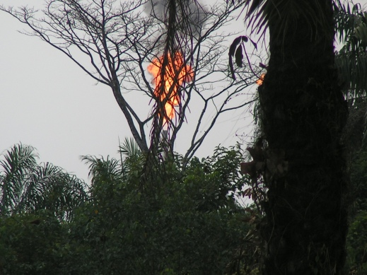 Gas flaring—a source of environmental pollution—in Omoku.