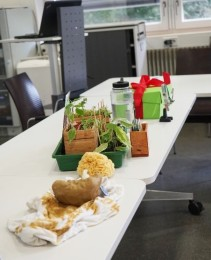 "Students' ""green city"" objects."
