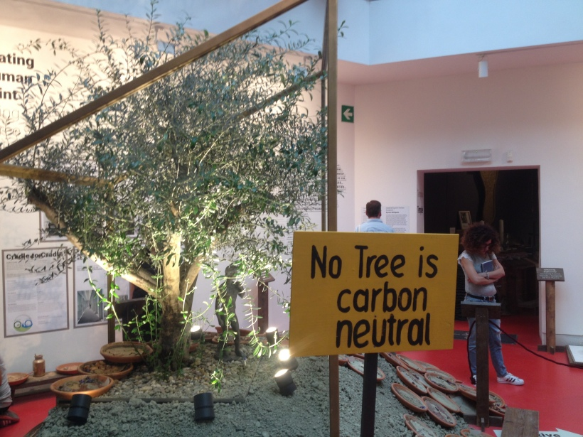 no-tree-is-carbon-neutral