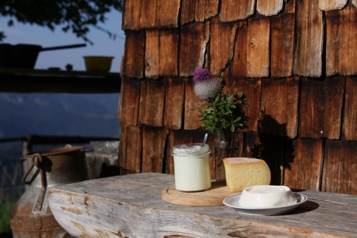 fixemer_thurn_Raw-milk products. A microbial farm (2)