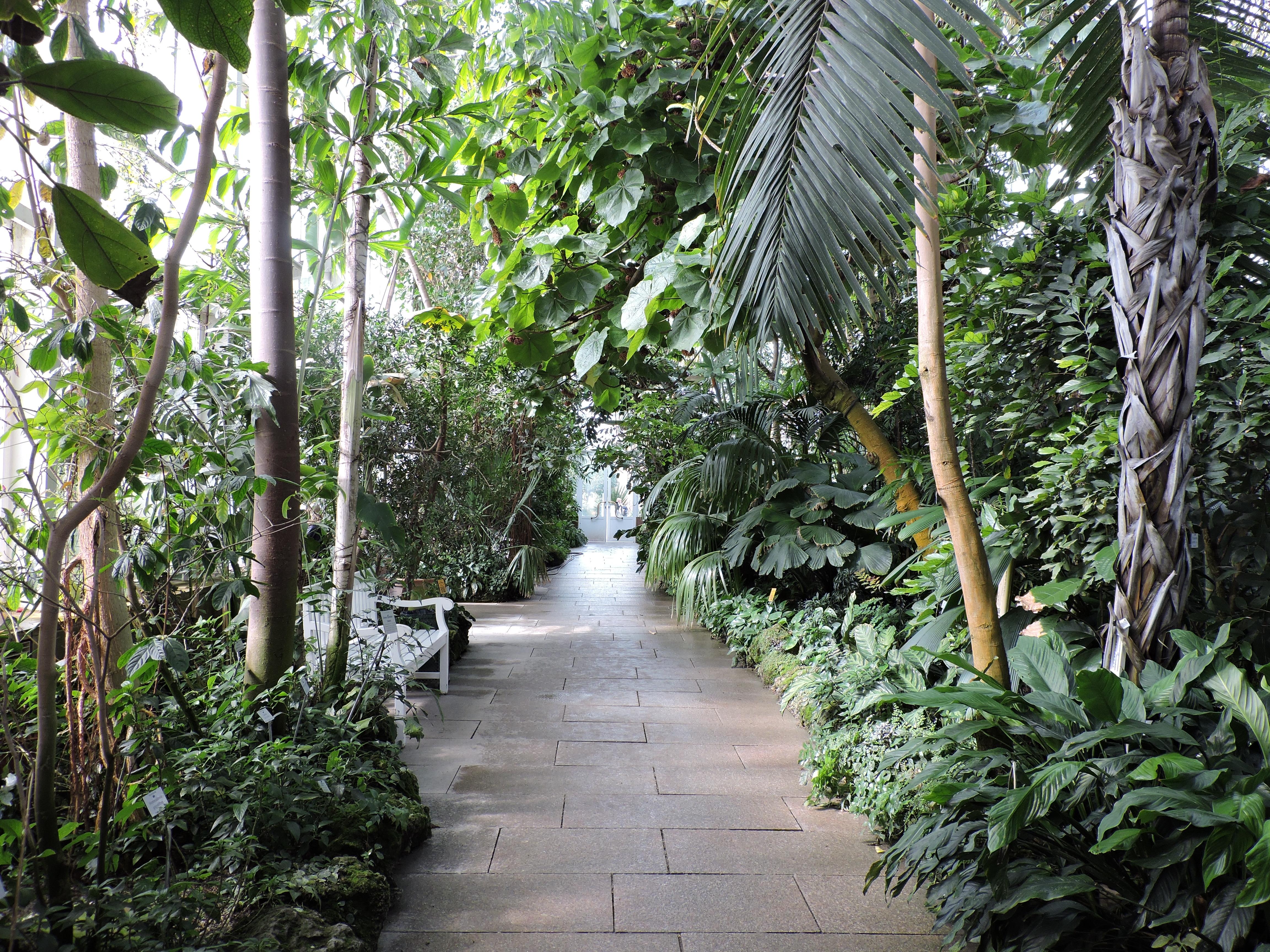 The Official Botanic Garden Of Rutgers: Munich's Beautiful Botanical Garden