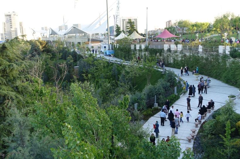 BronTaylor_nature_bridge_park