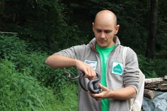 Sebastian Zoder with aesculapian snake (Zamenis longissimus) Jochen. Photo by Martin Meiske