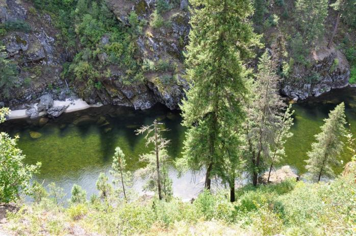 Selway_River_from_trail