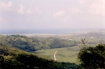 St Mary plantation landscape.